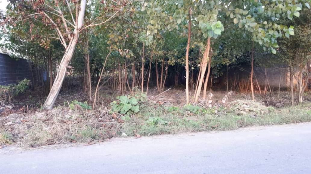 زمین ۵۰۰ متری مسکونی در استان گیلان جاده پیربازار به خمام روستای جیرسرباقرخاله-1-jpg
