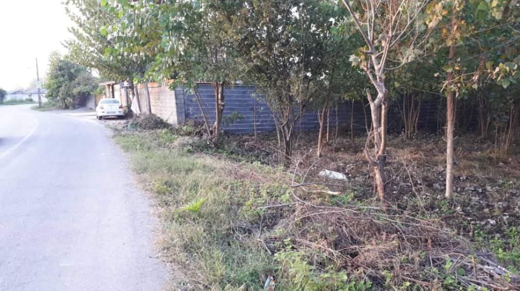 زمین ۵۰۰ متری مسکونی در استان گیلان جاده پیربازار به خمام روستای جیرسرباقرخاله-2-jpg