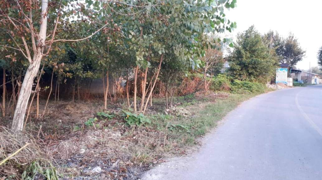 زمین ۵۰۰ متری مسکونی در استان گیلان جاده پیربازار به خمام روستای جیرسرباقرخاله-4-jpg